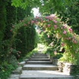 Kremenets Botanical Garden