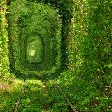 Тунель кохання влітку