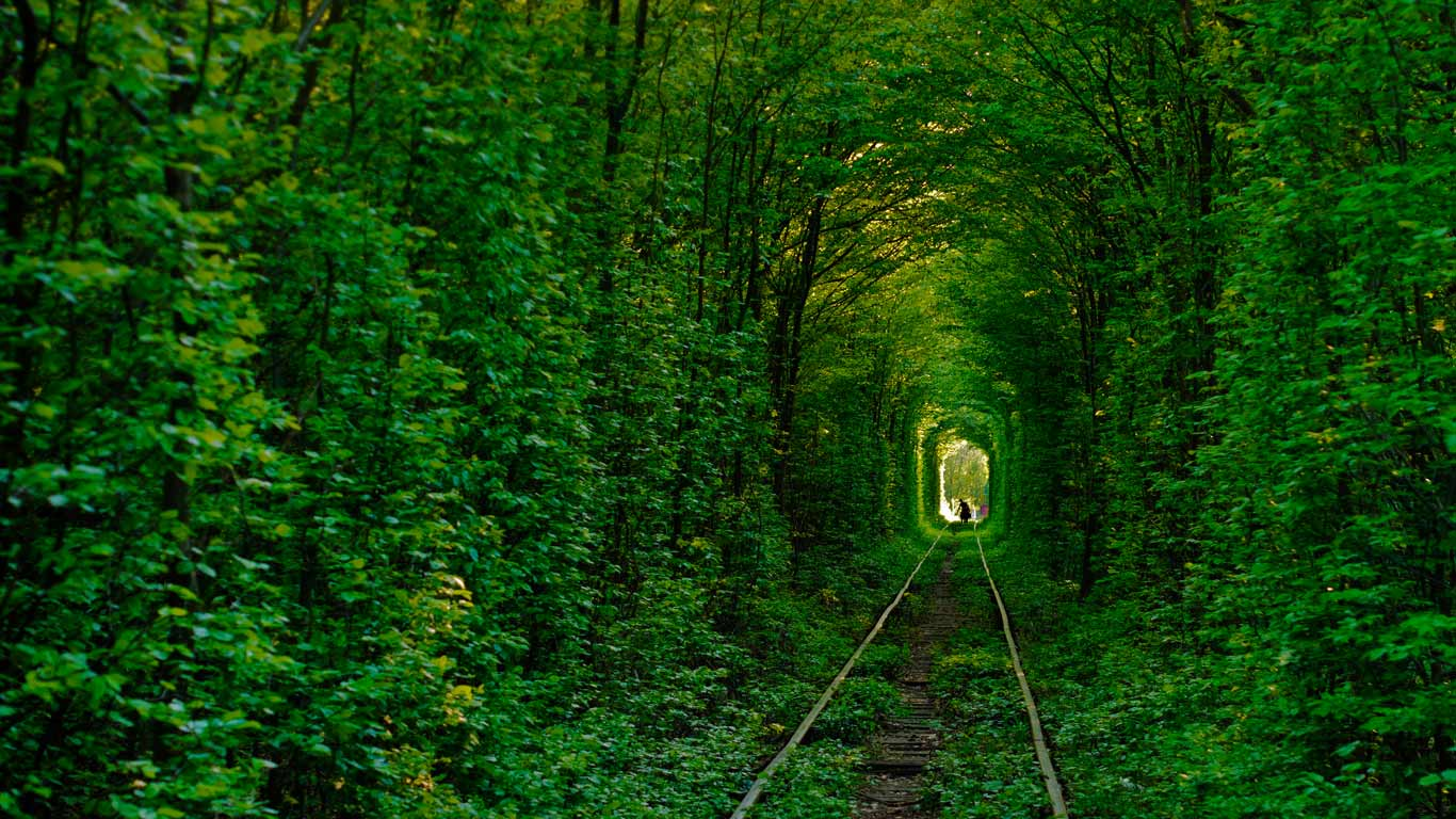 Image result for Tunnel of Love