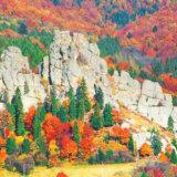 Урицкие скалы.Осень