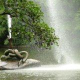 Fountain of the snake. Arboretum Sofiyivka