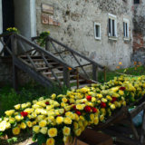 Flower Festival in the Castle of Saint Miklos
