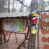 Озеро Свитязь,вело парк