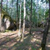 Житомир. Каменное Село