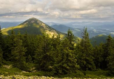 Гора Хомяк ( Карпаты)