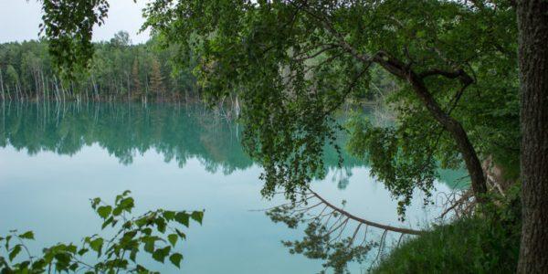 Черепашинское озеро