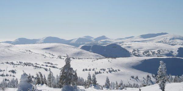 Зимний пейзаж Драгобрата
