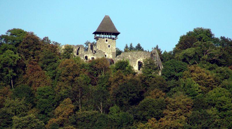 Nevitsky castle