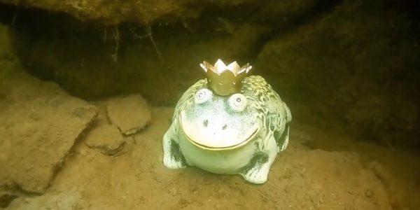 Малинский подводный музей,царевна-лягушка