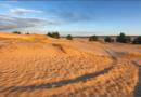 Kitsovo desert
