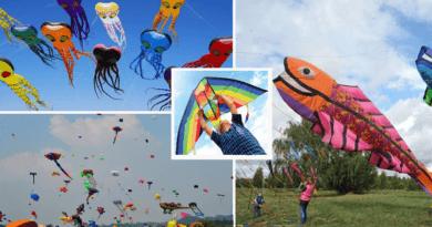 South Wind Kite Festival