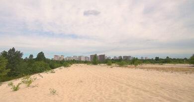 Desert in Kiev